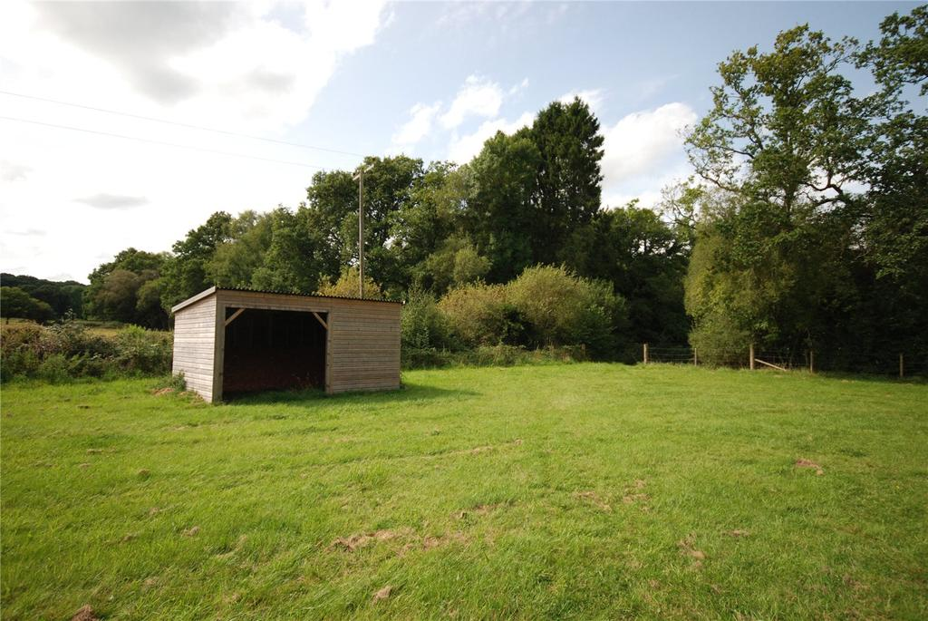 Equestrian Facility Character Property for sale in Godshill, Fordingbridge, Hampshire, SP6
