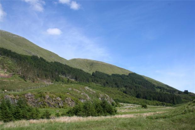 Land Commercial for sale in Glen Shiel Forest, Cluanie, Highlands