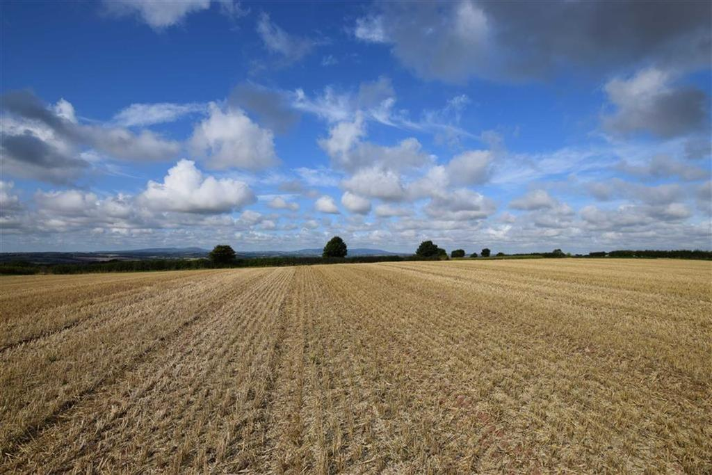 Farm Land Commercial for sale in Romsley, Bridgnorth, Shropshire
