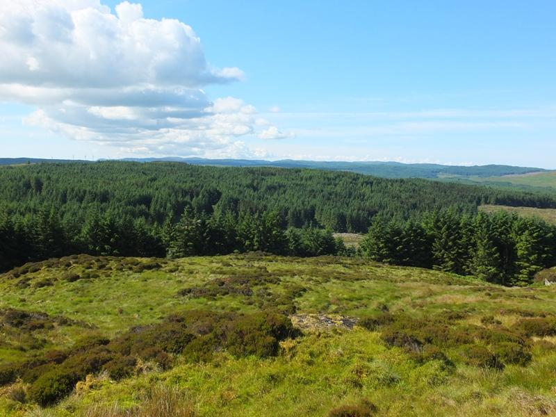 Land Commercial for sale in Achaglass Forest, Near Tarbert, Argyll PA29