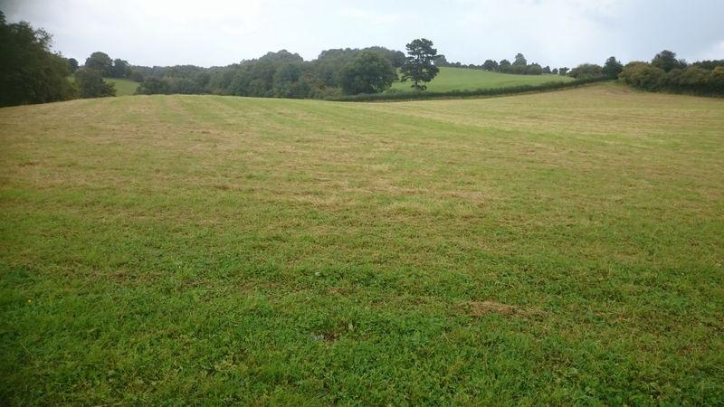 Land Commercial for sale in 11.5 Acres Llantrisant, Usk