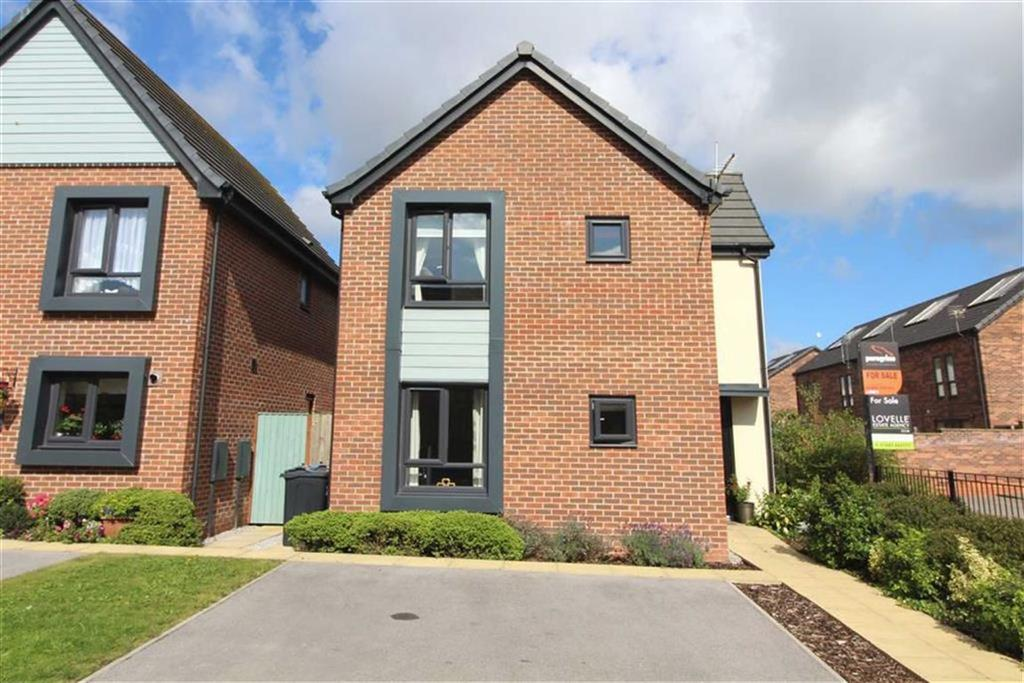 3 Bedrooms Detached House for sale in Saltburn Street, Hull