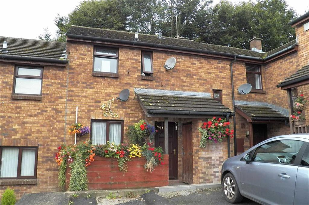 2 Bedrooms Semi Detached House for sale in Cae Eithin, Carmarthen