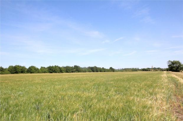 Land Commercial for sale in Land Between Stilton Yaxley, Peterborough, Cambridgeshire