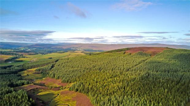 Land Commercial for sale in Glenkirk Forest, Findhorn Valley, Highlands