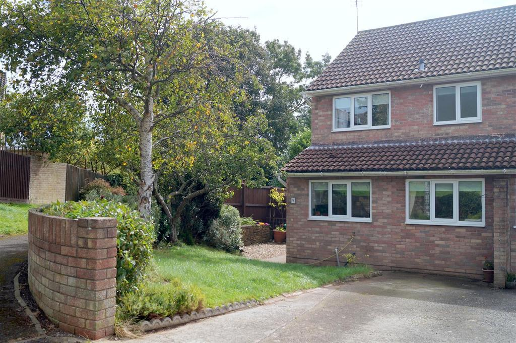 3 Bedrooms Semi Detached House for sale in Cannington Close, Sully