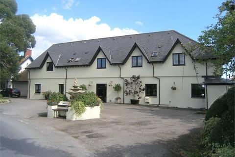 9 bedroom detached house for sale - St Brides Wentlooge, Newport