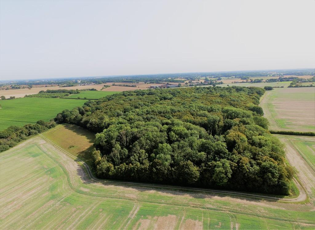 Land Commercial for sale in Shadingfield, Nr Beccles