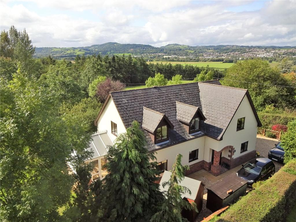 5 Bedrooms Detached House for sale in Hope, Leighton, Welshpool, Powys