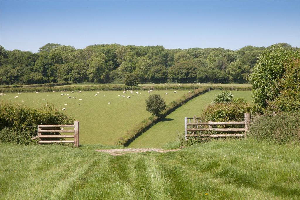 Land Commercial for sale in Chicksgrove, Tisbury, Salisbury, SP3