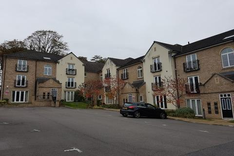 2 bedroom apartment to rent - Sycamore Court, Sharrow, S11