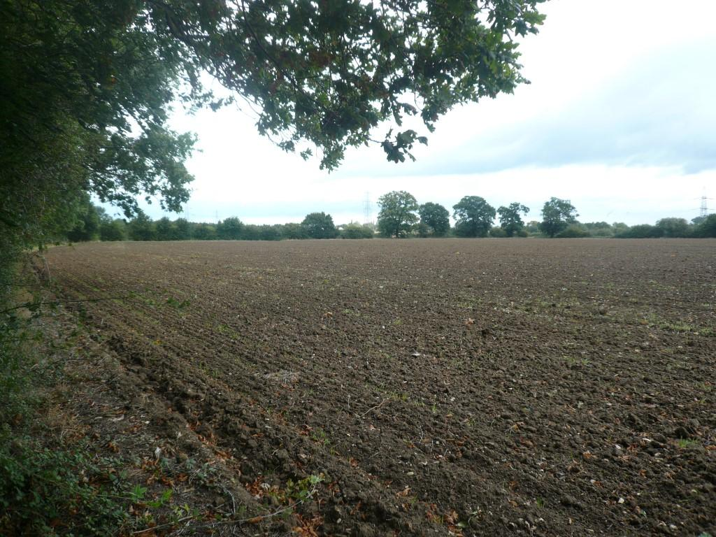 Farm Land Commercial for sale in Yaxley IP23