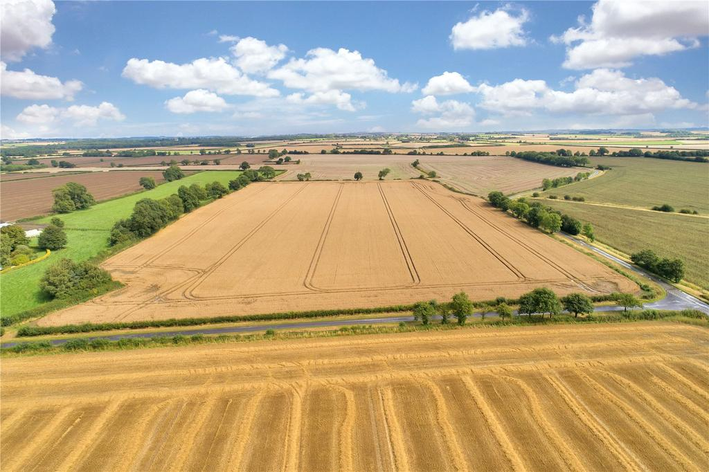 Land Commercial for sale in Lot 8: Gautby House Farm, Gautby, Lincolnshire, LN9