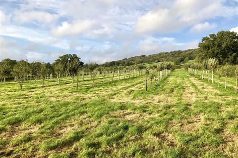 Land for sale - Awliscombe, Honiton, Devon, EX14