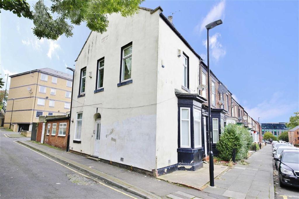 3 Bedrooms Terraced House for sale in Salisbury Street, Hendon, Sunderland, SR1