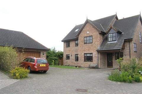 6 bedroom detached house to rent - Luthers Rise, Willerby
