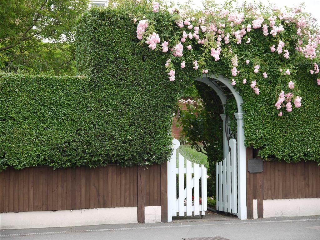 6 Bedrooms Semi Detached House for sale in Dulwich Village, London, London