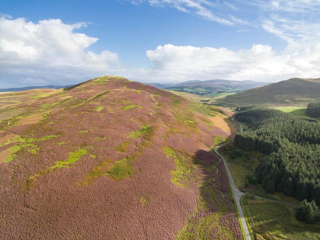 Land Commercial for sale in Eddleston, Peebles