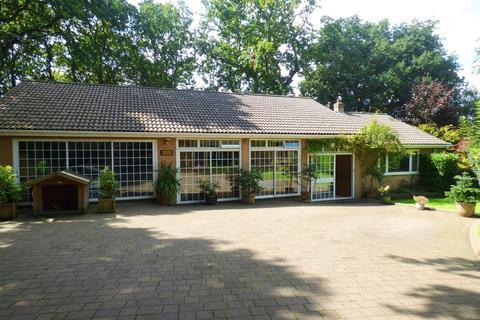 5 bedroom detached bungalow for sale - CORFE MULLEN