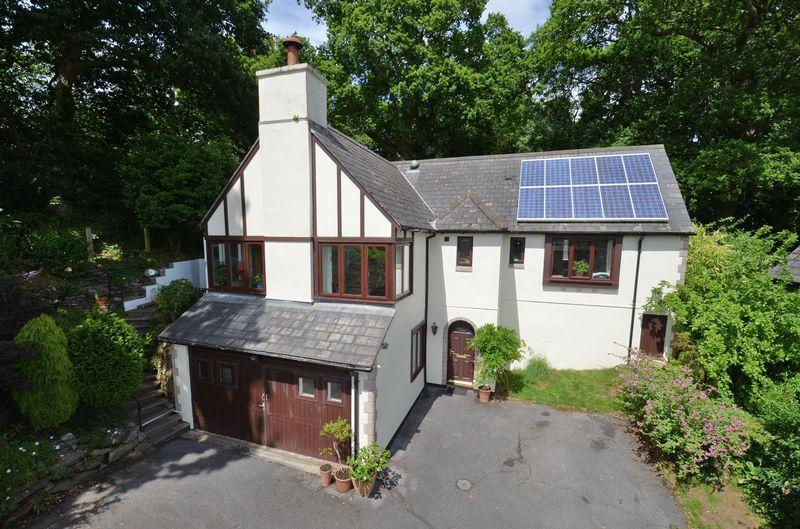 4 Bedrooms Detached House for sale in Copland Meadows, Totnes