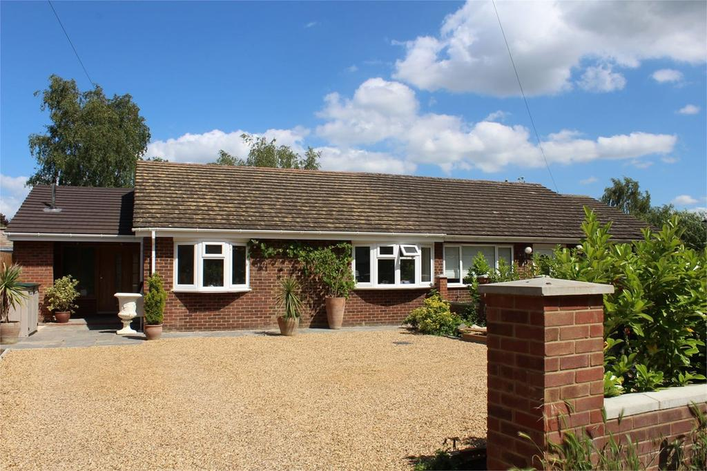3 Bedrooms Semi Detached Bungalow for sale in Ickwell Road, Northill, Biggleswade, SG18