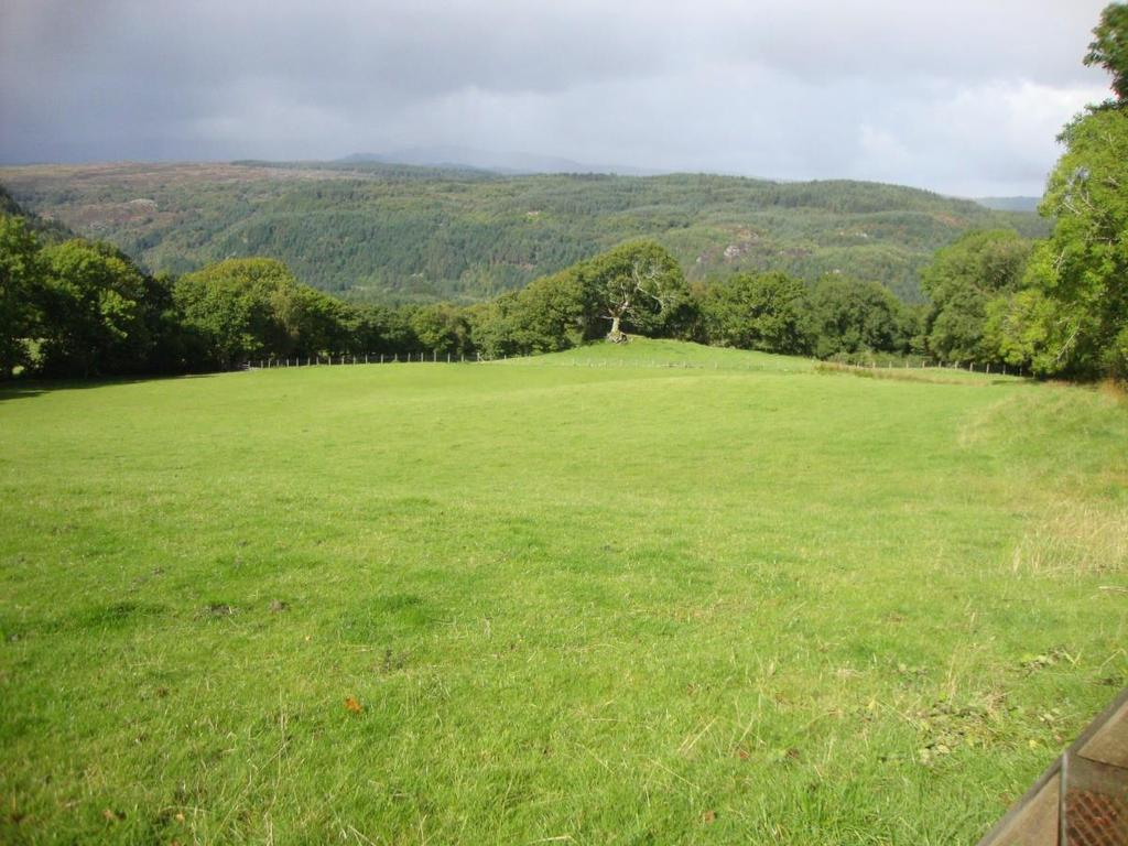 Land Commercial for sale in Dolwyddelan