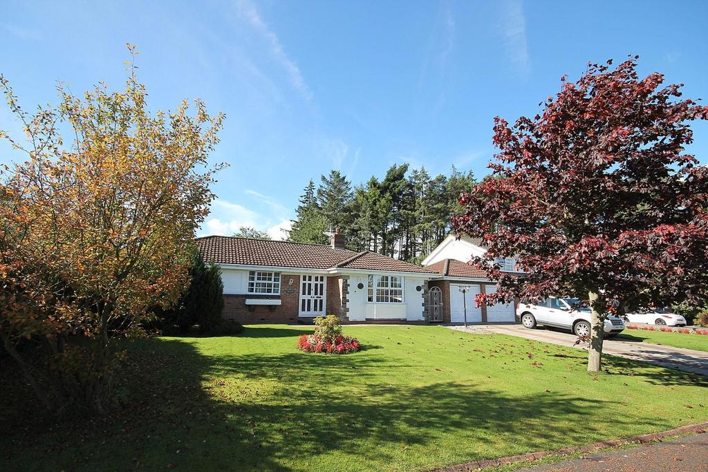3 Bedrooms Detached Bungalow for sale in Byron Court, Crook