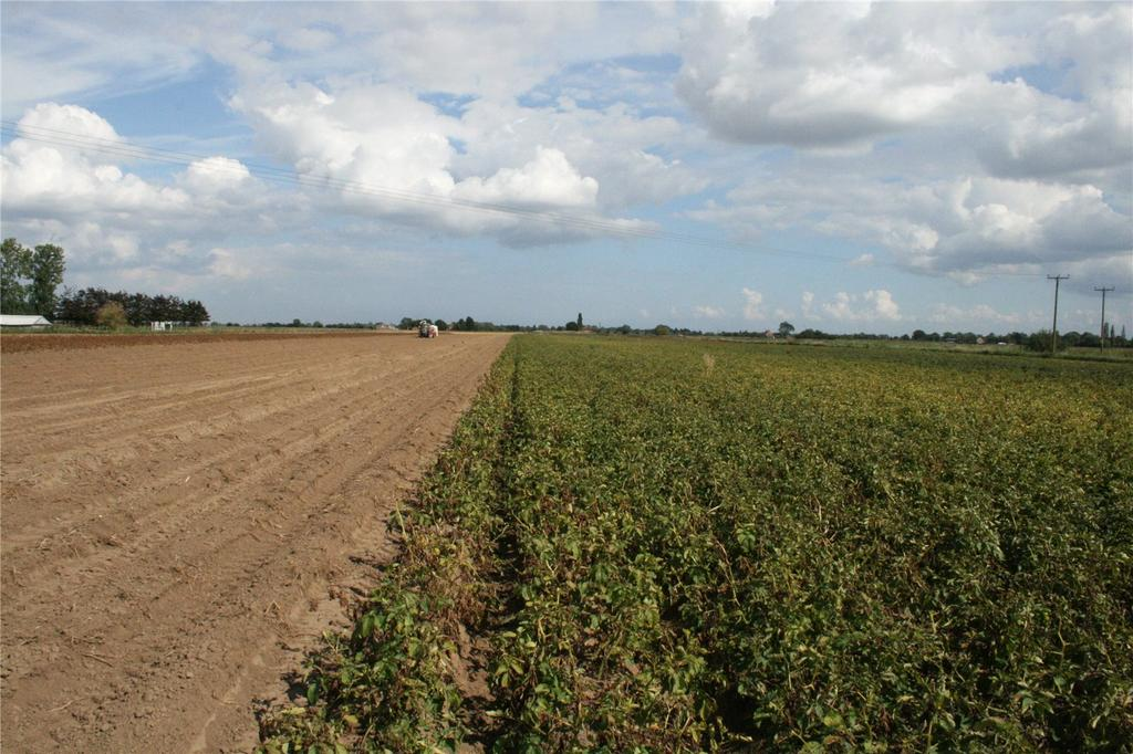 Land Commercial for sale in Land At Quadring - Lot 2, Spalding, Lincolnshire, PE11