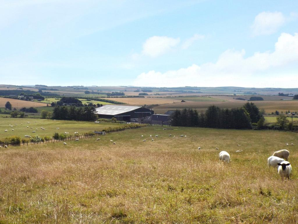 Land Commercial for sale in Moss side Lot 1, Cuminestown, Turriff, AB53 5YL, AB53