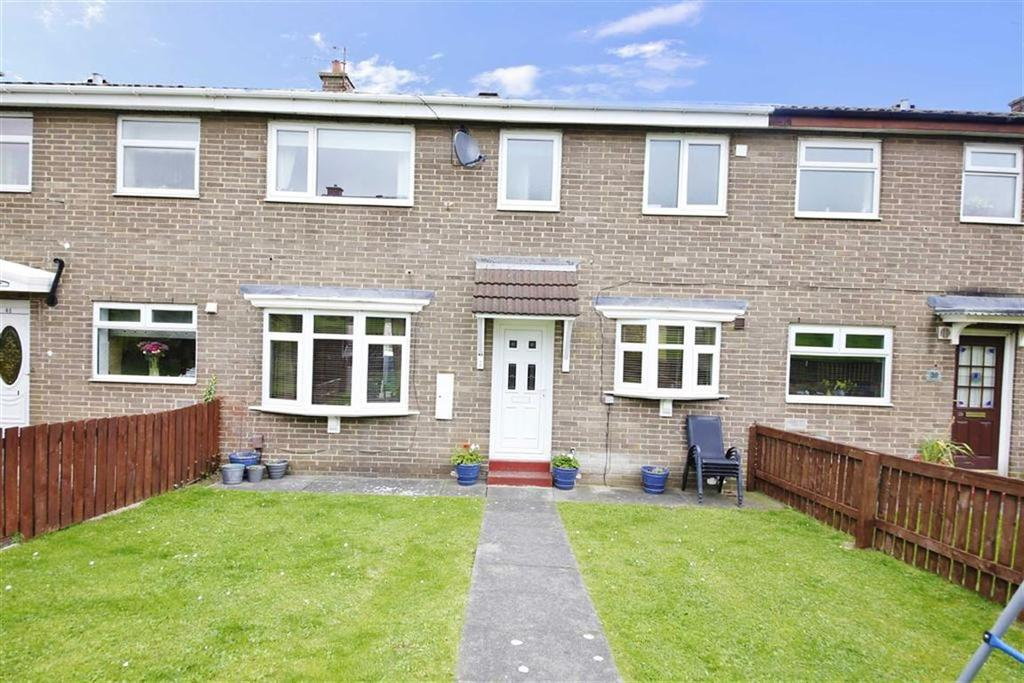 3 Bedrooms Terraced House for sale in Treecone Close, Hall farm, Sunderland, SR3