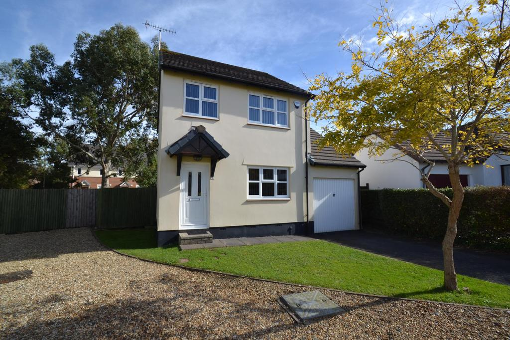 3 Bedrooms Detached House for sale in Wester-Moor Close, Roundswell