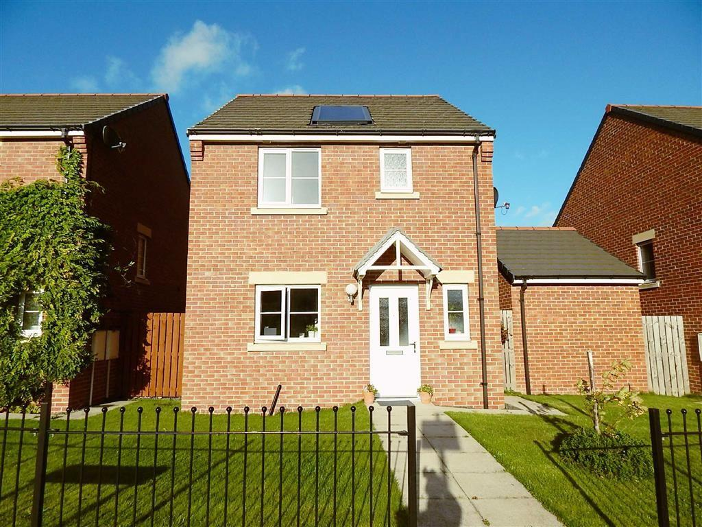 3 Bedrooms Detached House for sale in Howdon Green, Willington Quay, Tyne And Wear, NE28