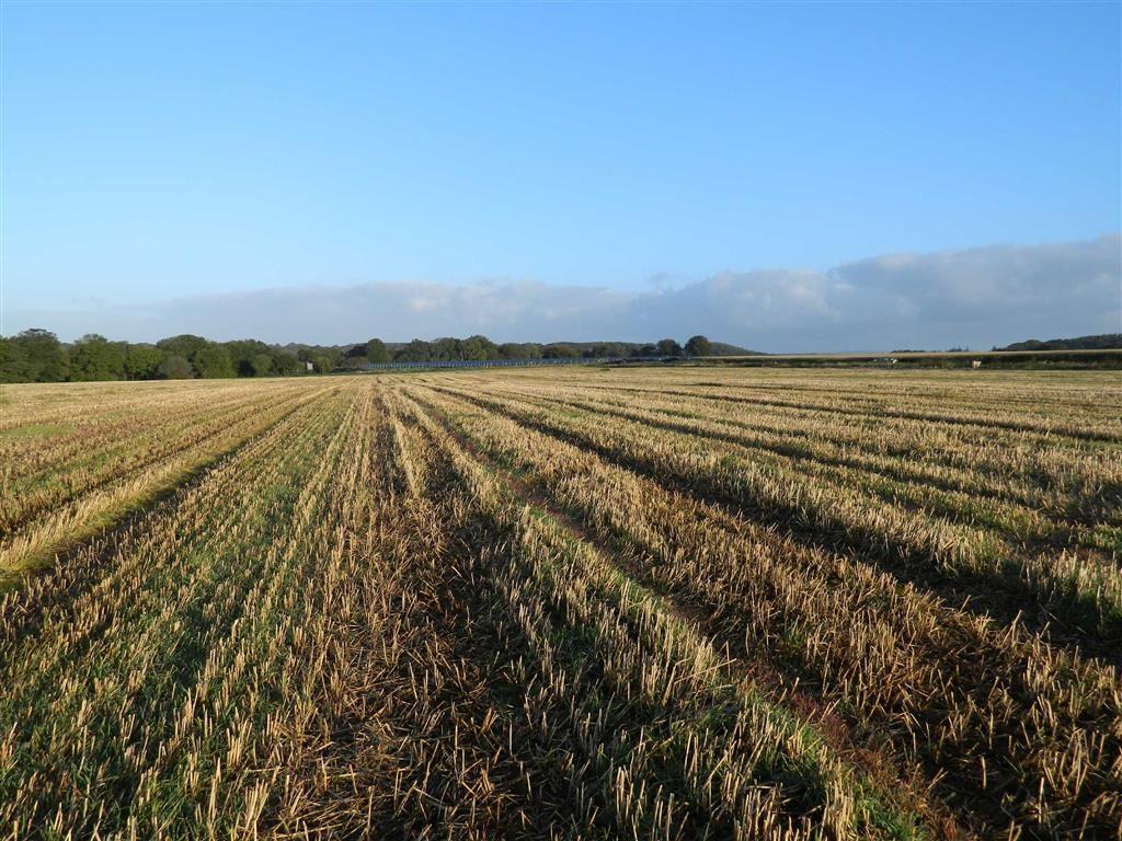 Land Commercial for sale in Trickey Warren Lane, Trickey Warren, Taunton, Somerset, TA3