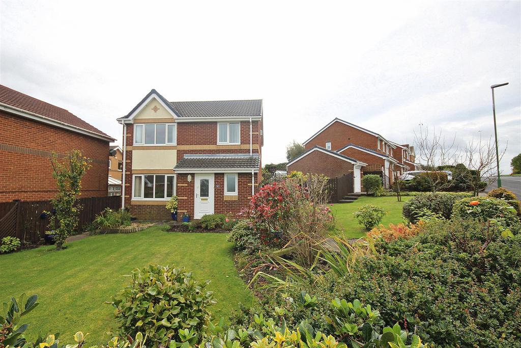 3 Bedrooms Detached House for sale in Browbank, Sacriston, Durham