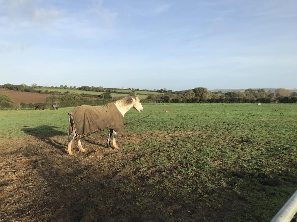 Land Commercial for sale in Whiteley Bank, Isle of Wight