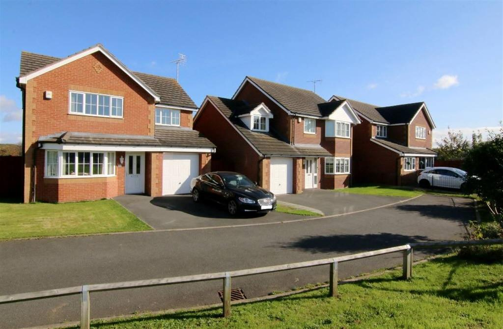3 Bedrooms Detached House for sale in Ewloe Heath, Buckley