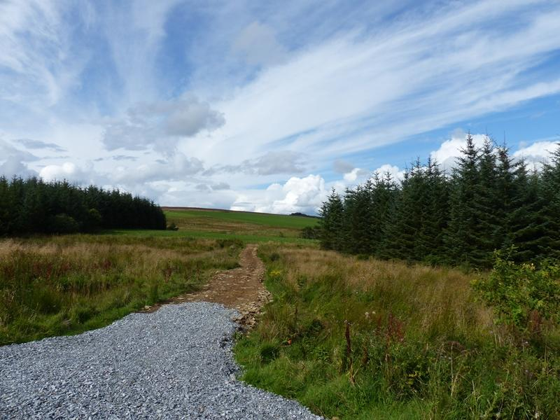 Land Commercial for sale in Tuttin Wood, Cairnie, Aberdeenshire AB54