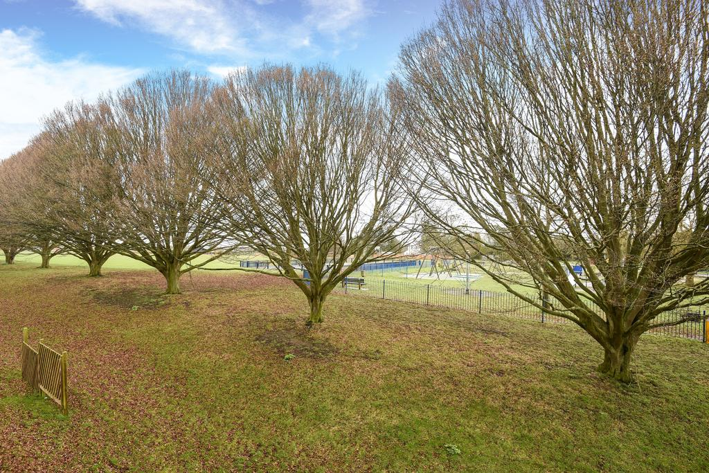 Cutteslowe Park View
