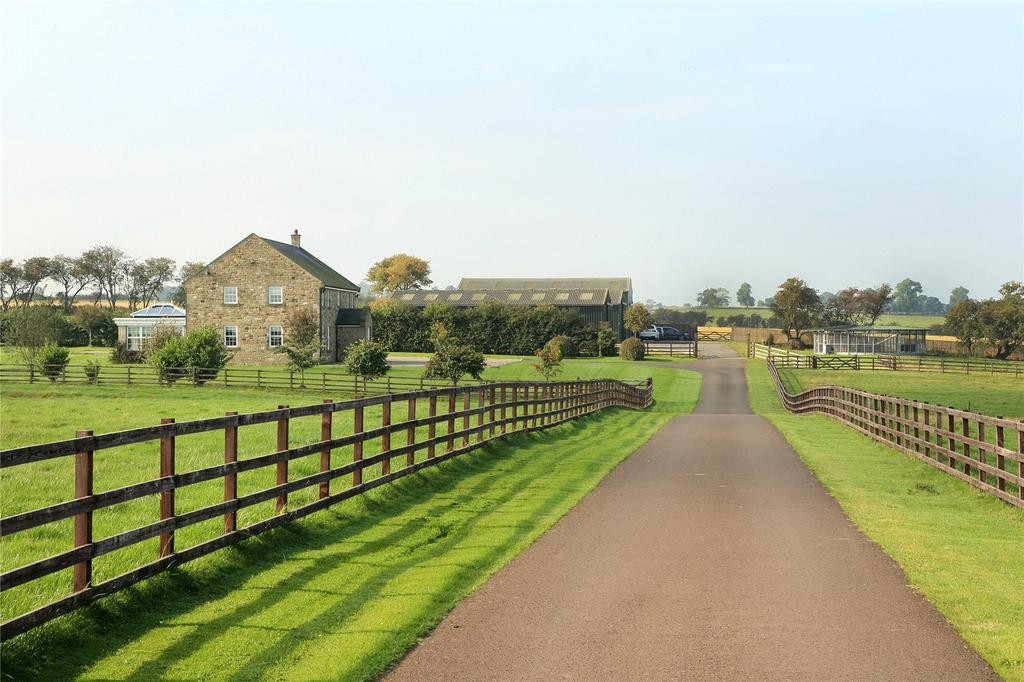 Toft Hall Driveway