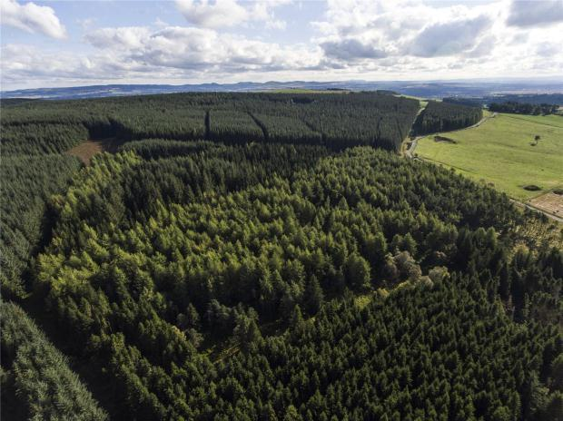 Land Commercial for sale in Kynballoch Forest, Blairgowrie, Perth and Kinross
