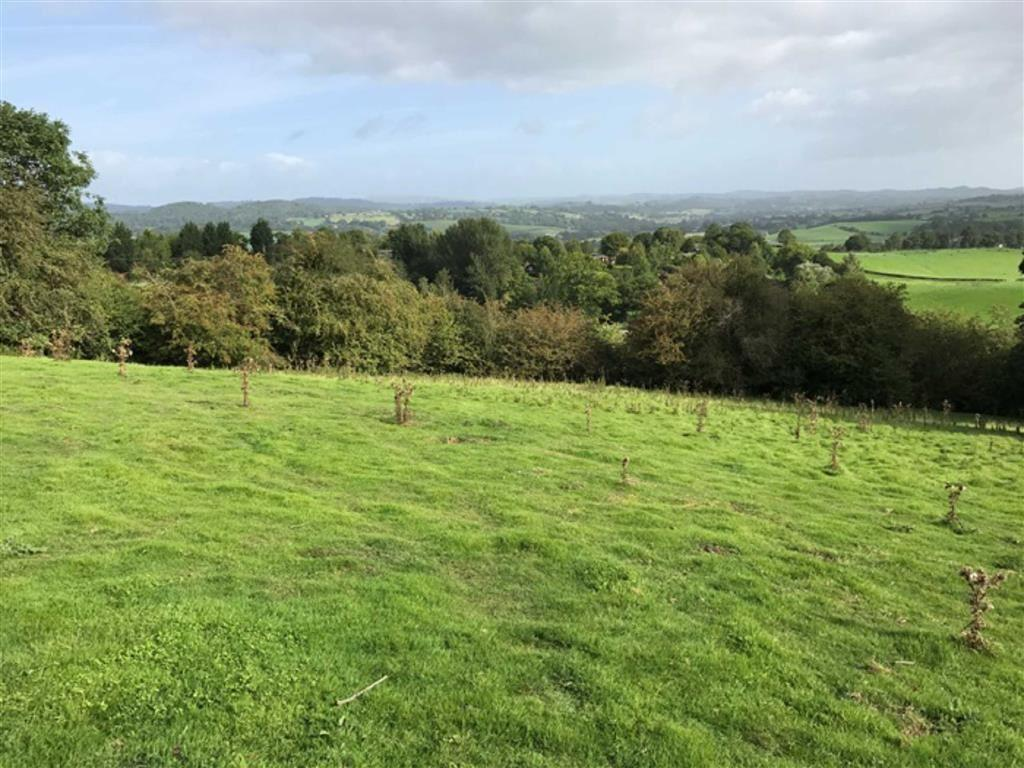Land Commercial for sale in Roadside Accomodation Land, Formerly Part Of Twll Farm, Pentrebeirdd, Meifod, Powys, SY21