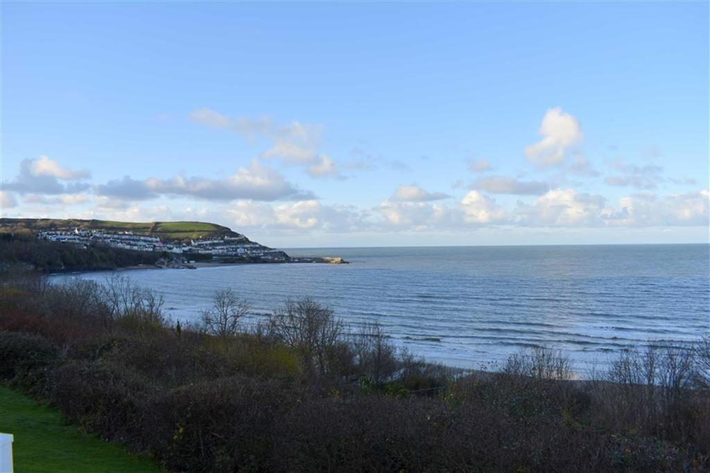 3 Bedrooms Park Home Mobile Home for sale in Harbour View, New Quay, Ceredigion