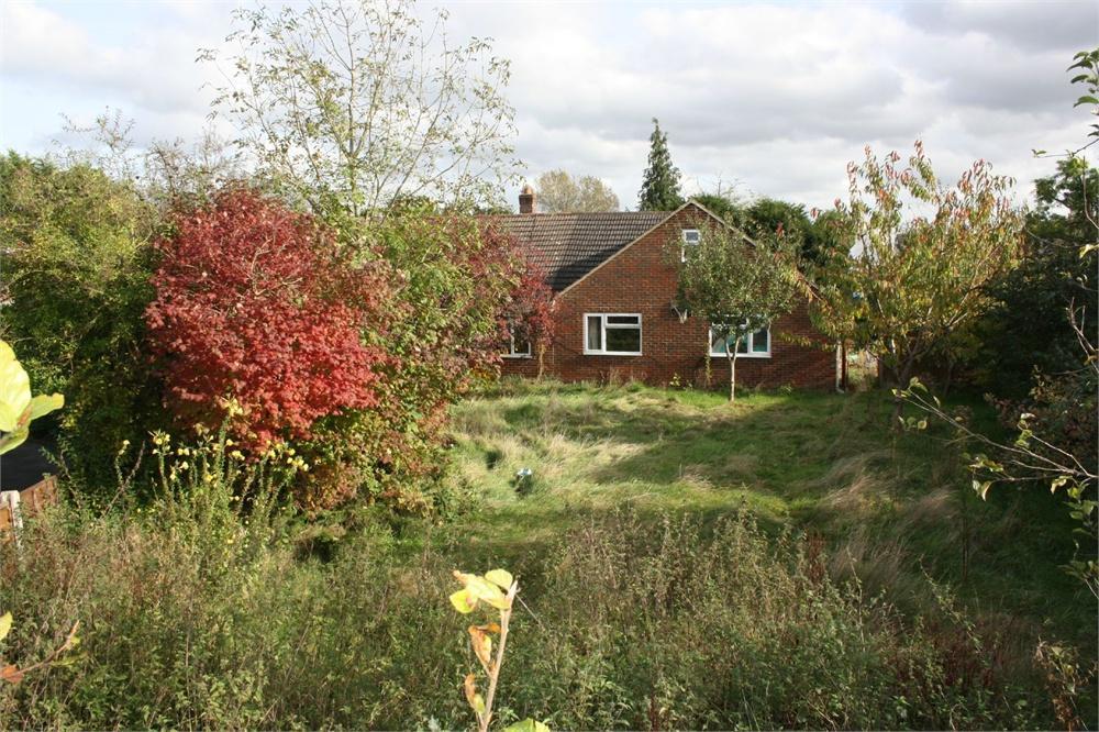 4 Bedrooms Detached Bungalow for sale in Orchard Close, Badshot Lea, Farnham, Surrey