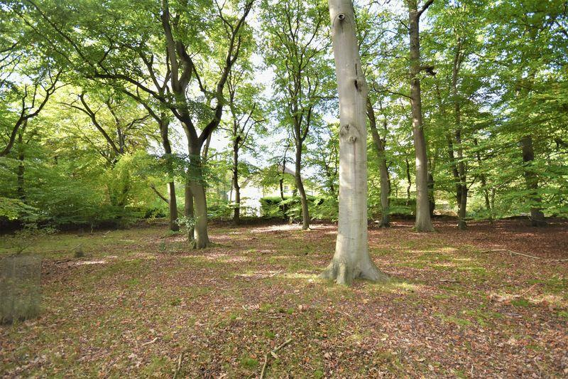 Land Commercial for sale in Land For Sale: Farnham Common (10 Acres)