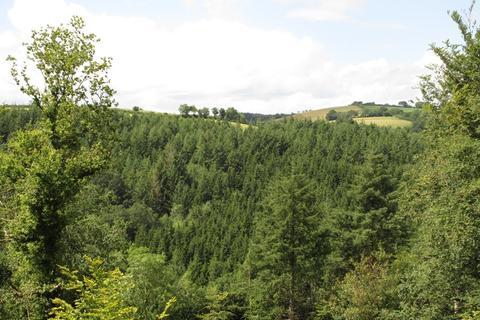 Land for sale - Easterlands Plantation,Stoodleigh, Tiveton, Devon EX16