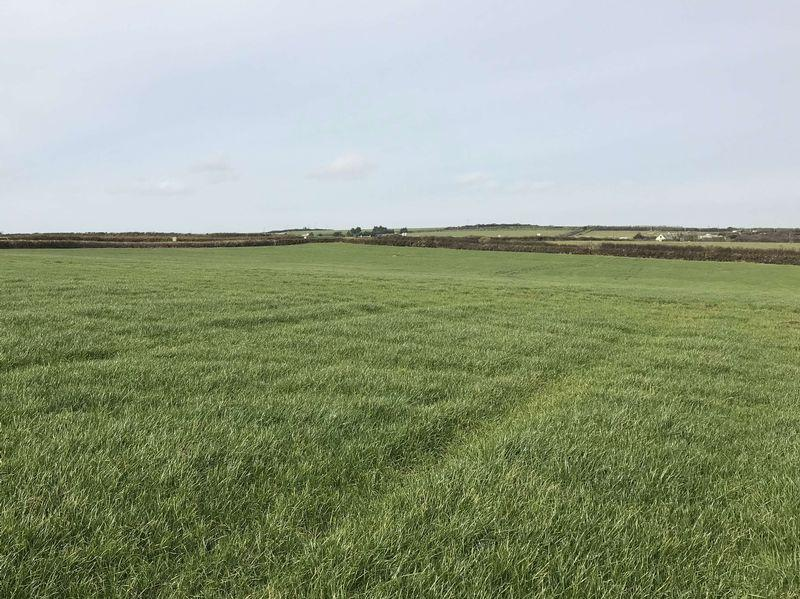 Land Commercial for sale in Woolley, Bude