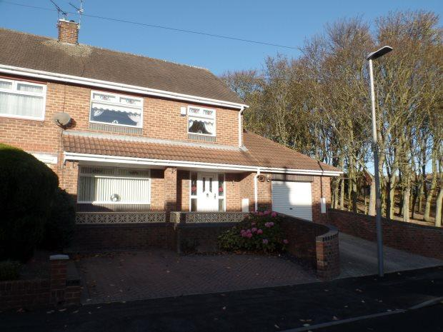 3 Bedrooms Semi Detached House for sale in THORNTREE GILL, PETERLEE, PETERLEE