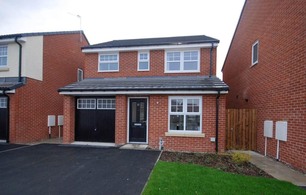 3 Bedrooms Detached House for sale in Holmes Drive, Hebburn