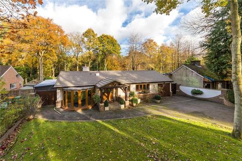 3 bedroom detached bungalow for sale - Oldhill Wood, Studham, Dunstable, Bedfordshire