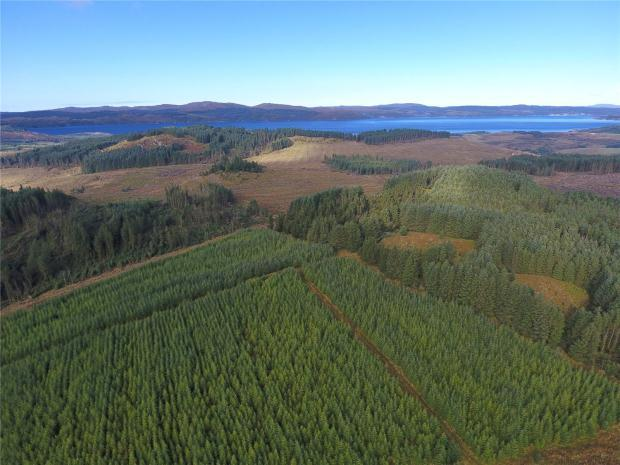 Land Commercial for sale in Acharossan Forest, Tighnabruaich, Argyll